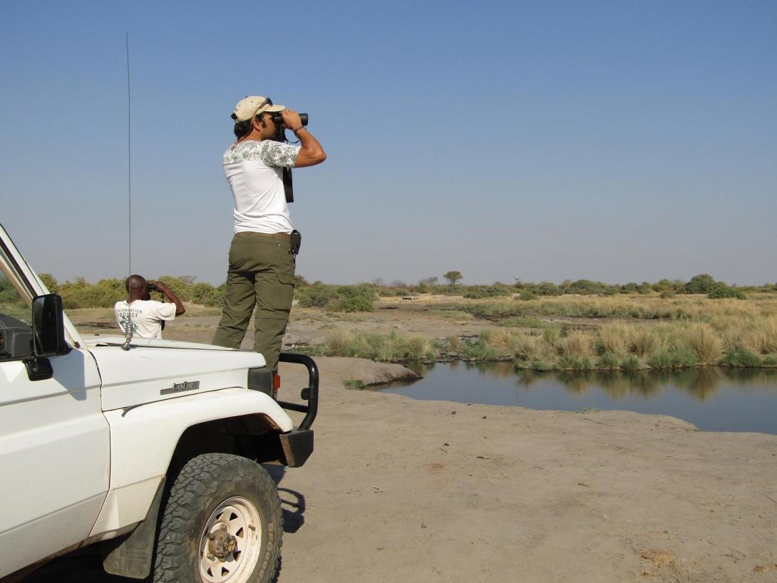 Conservation volunteers conducting a wildlife survey in Botswana